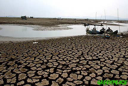 Mekong Delta takes measures to reduce...